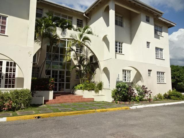 Apartment For Rent In Kingston