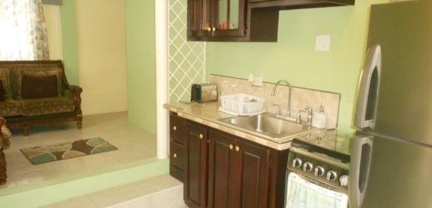 Fully furnished 2 bedroom 2 bath apartment for rental in ...